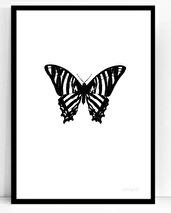 .Poster - Atelje Epifor (Hippotigris)