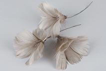 Fjädrar till riset, mullvad (blom)
