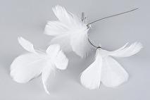 Fjädrar till riset, vita (blom)