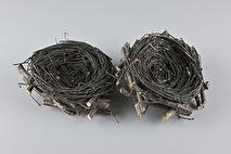 Fågelbo/rede av björkris