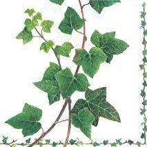 Ambiente Servetter - Ivy Tendril