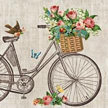 Ambiente Servetter - Robin On Bike