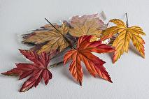 Höstlöv (påse med 12 löv)