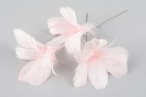 Fjädrar till riset, ljusrosa (blom)