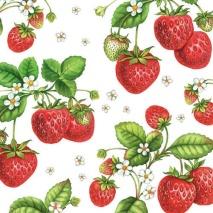 Ambiente Servetter - Strawberry Plant