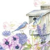 Ambiente Servetter - Birdhouse backyard