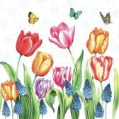 Ambiente Servetter - Tulips & Muscari