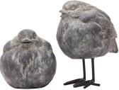 Eldgarden, Fågel