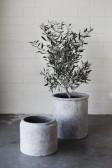 ..ERNST Kruka (grå terracotta)