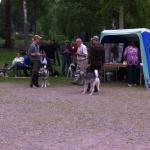Anja och Aijko gör upp om bästa unghund