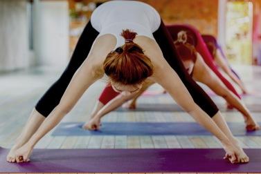 Priser Hot Yoga Halmstad - prislista Yogainstitutet Halmstad