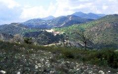Vy över typisk landskapstyp på Cypern.