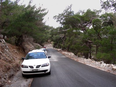 På väg uppför Ori Thripti, Kreta. Typisk miljö för O. spitzelii subsp. nitidifolia