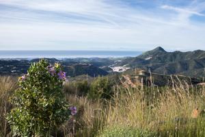 Vy från de Andalusiska bergen mot kusten. Atlasbergen i Nordafrika skymtar i horisonten.