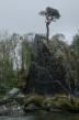 062 Innerdalen 2010_403