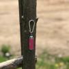 Nyckelringslampa - Nyckelringslampa rosa