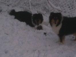 Amalia och Izza (2)