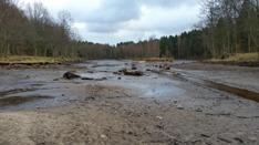 Utgrävning av Tollerupsjön 2016