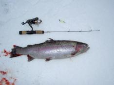 Isfiske i Tollerup 090106
