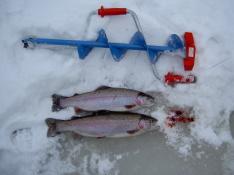 060129 Isfiske i Tollerup
