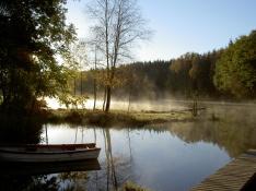 041009 Fiske i Tollerup