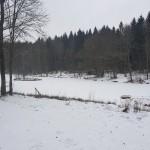 Vintriga Tollerupsjön