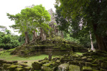 Jungle temple at Angkor Thom