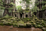 Jungle temple of Ta Prohm, Siem Reap
