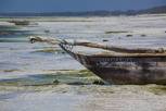 Dhow during low tide, Zanzibar