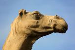 Camel Monument, Dubai