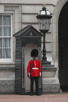 Guard at Buckingham Palace, London