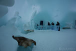 The Ice Bar at the Ice Hotel, Jukkasjärvi