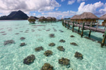 Overwater bungalows at Bora Bora Pearl Beach Resort, Bora Bora