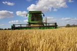 A combine harvester threshing a field of grain, Helsingborg