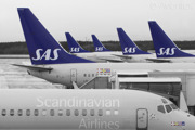 SAS lineup of a MD80 and several Boeing 737s at the domestic terminal at Stockholm/Arlanda