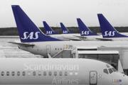 SAS lineup of a MD80 and several Boeing 737s at the domestic terminal at Stockholm/Arlanda