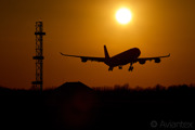 An Airbus A340-300 about land at Copenhagen/Kastrup at sunset