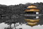 The Gold Pavillion, Kyoto