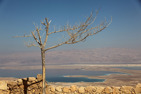 The Dead Sea and Massada ruins, Israel