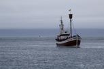Whale watching ship, Húsavík