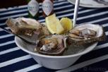 Oysters, Knysna