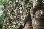 Statues at Buddha Park