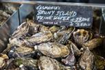 Tasmanian oysters at Sydney Fish Market