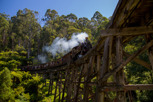 Puffin Billy train at Belgrave, Victoria