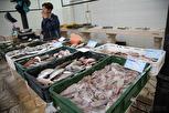 Fish market, Split