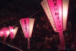 Lanterns and cherry blossoms at Meguro River, Tokyo