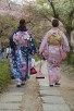 Japanese women strolling along Philospher's Path, Kyoto