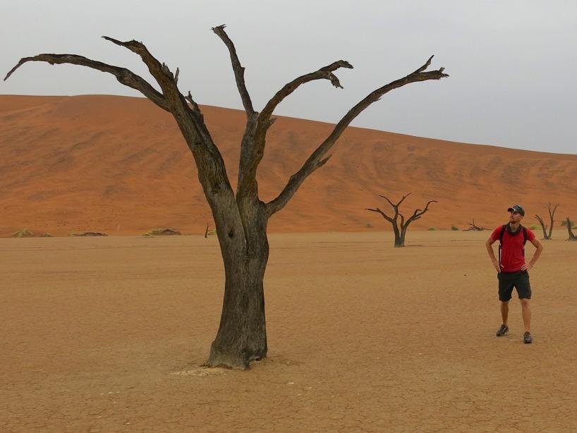 Om man inte besöker Sossusvlei och Deadvlei om man är i krokarna begår man ett stort misstag! En utav världens vackraste platser!