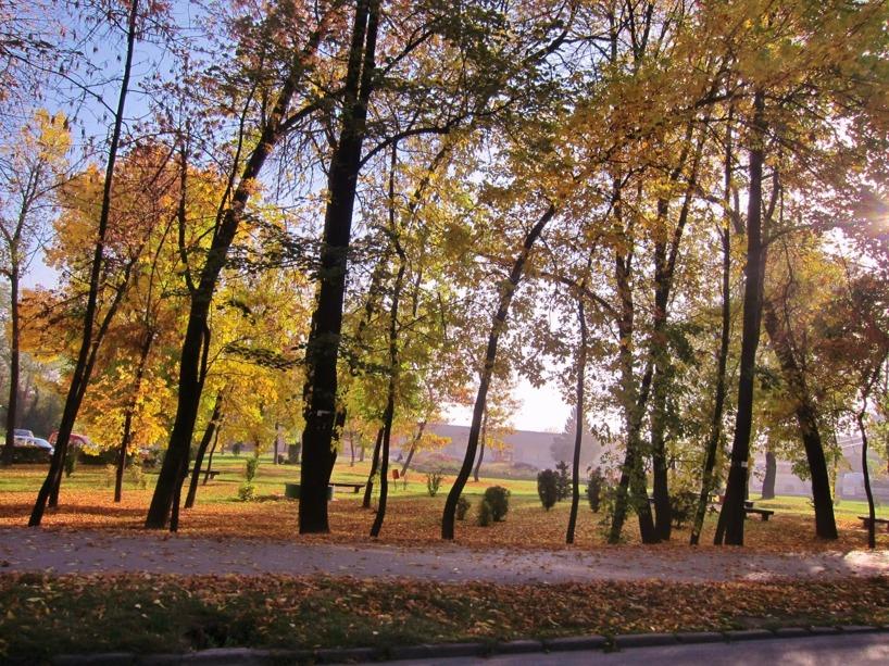 En park i vackra höstfärger - kylan hinner ifatt oss!