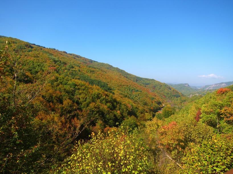 Det var vackert i bergen.. Speciellt nu när hösten är kommen...